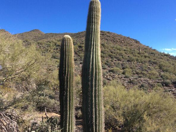 45 N. Cottonwood Canyon Rd., Cave Creek, AZ 85331 Photo 26