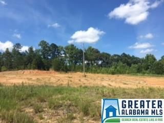 2450 Co Rd. 228, Clanton, AL 35045 Photo 9