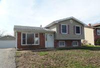 Home for sale: 123 Delaware Dr., Bolingbrook, IL 60440