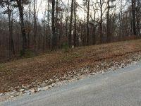 Home for sale: 138 Jimmy Houston Way, Cedar Grove, TN 38321