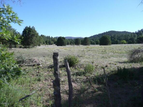 200 E. Cline Crossing, Young, AZ 85554 Photo 50