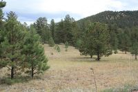 Home for sale: Tbd Tallahassee Trail, Canon City, CO 81212