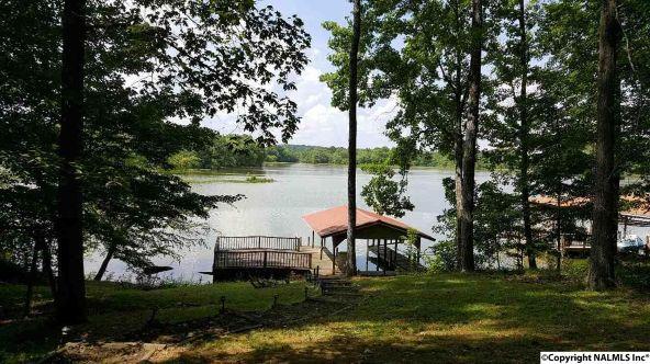695 County Rd. 585, Cedar Bluff, AL 35959 Photo 9