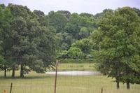 Home for sale: 00 Cooper Anderson, Jackson, TN 38305
