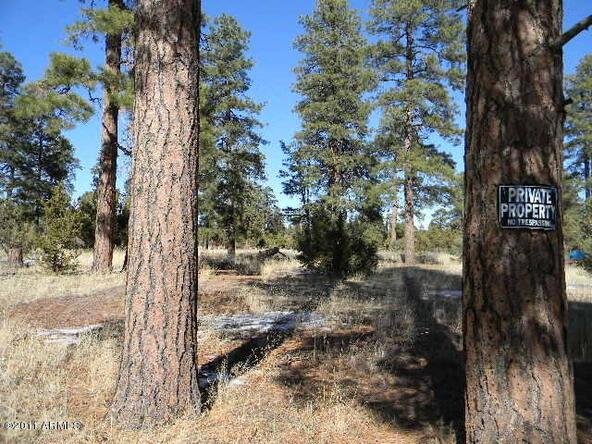 2000 Sunset Trail, Overgaard, AZ 85933 Photo 3
