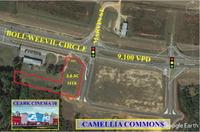 Home for sale: 0 Boll Weevil Cir., Enterprise, AL 36330