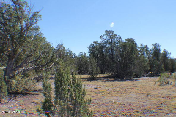 8 Acres Off Of Acr N. 3114, Vernon, AZ 85940 Photo 4