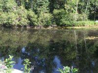 Home for sale: 163 Larch Trail, Lake, MI 48632