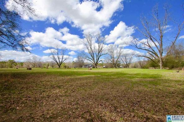 2353 Stallings Rd., Centreville, AL 35042 Photo 46