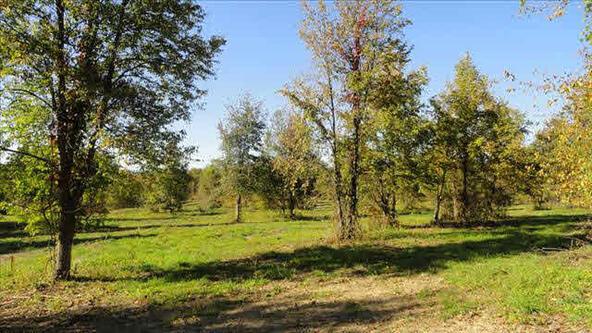 Cty Rt 27, Claverack-Red Mills, NY 12513 Photo 6