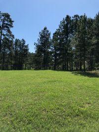 Home for sale: Monica Dr., Avinger, TX 75630