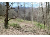 Home for sale: 000 Howard Moore Rd., Hot Springs, NC 28743
