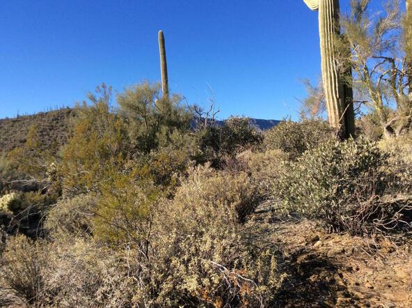45 N. Cottonwood Canyon Rd., Cave Creek, AZ 85331 Photo 29