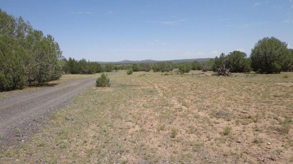 261 Juniperwood Ranch Lot 261, Ash Fork, AZ 86320 Photo 33