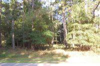 Home for sale: 79 Tuscarora Avenue, Beaufort, SC 29907
