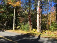 Home for sale: 302 Gillette Rd., New Hartford, CT 06057