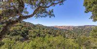 Home for sale: 122 El Toyonal, Orinda, CA 94563