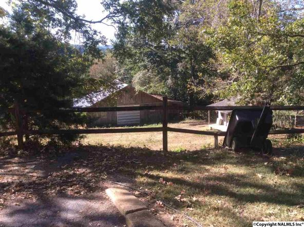 4529 E. Old Hwy. 278, Hokes Bluff, AL 35903 Photo 18