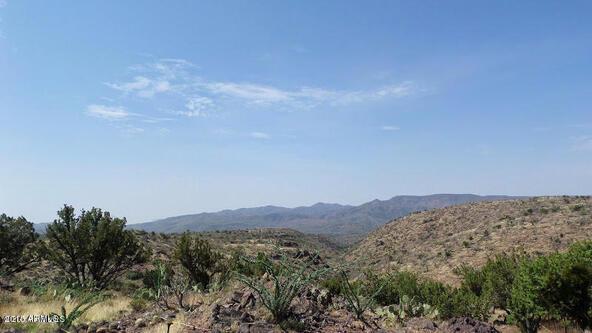 65 N. Juans Canyon (Forest Service) Rd., Cave Creek, AZ 85331 Photo 2