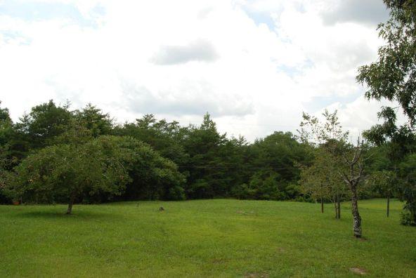 70 County 944 Rd., Mentone, AL 35984 Photo 59