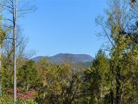 Home for sale: 41 Wandering Oaks Way, Asheville, NC 28805