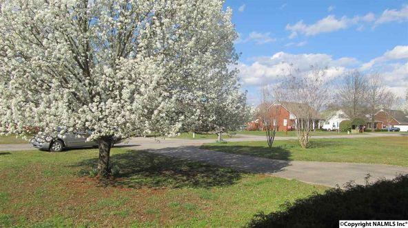 153 County Rd. 599, Moulton, AL 35650 Photo 17