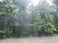 Home for sale: Tbd #1 Joy Ln., Hallsville, TX 75650
