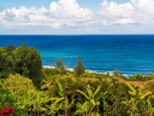3292-D Kalihiwai Rd., Kilauea, HI 96754 Photo 32