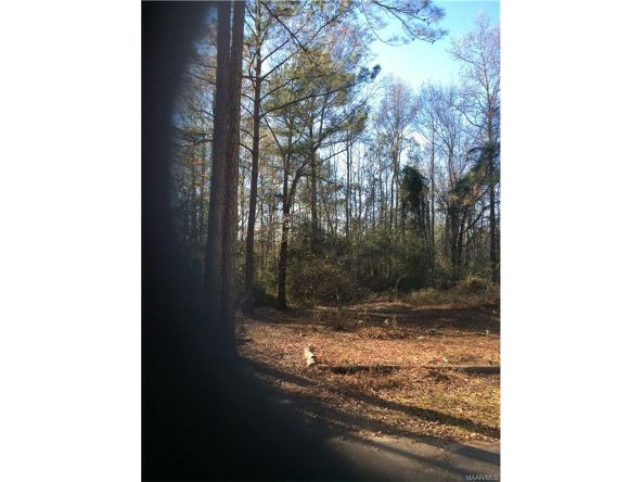 2605 Robinson Rd., Eclectic, AL 36024 Photo 8
