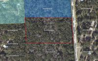 Home for sale: Lot 6 N.E. 763rd St., Old Town, FL 32680