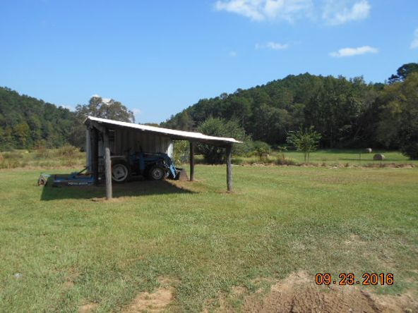 473 Polk Rd. 675, Mena, AR 71953 Photo 19
