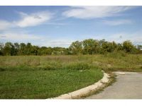 Home for sale: Lot 2 Minter Rd. & Broadway St., Grain Valley, MO 64029