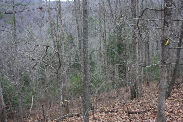 400-4 Cliffview, Campton, KY 41301 Photo 14