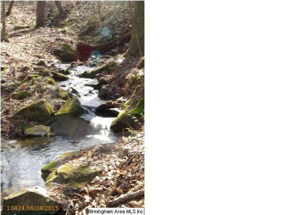 4 Horton Mill Rd., Oneonta, AL 35121 Photo 30