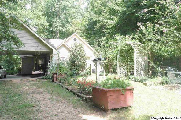 20270 Sandlin Rd., Elkmont, AL 35620 Photo 24