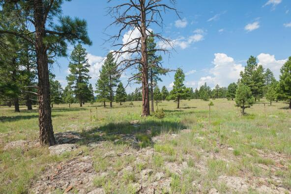 8r Lockett Ranches, Flagstaff, AZ 86001 Photo 22