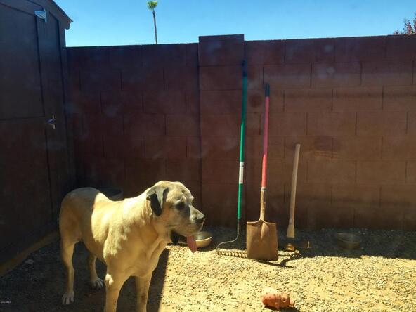 512 E. Canterbury Ln., Phoenix, AZ 85022 Photo 32