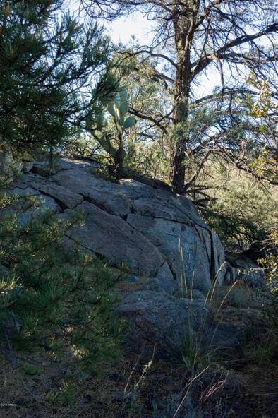 17955 W. Buckhorn Dr., Peeples Valley, AZ 86332 Photo 10