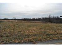 Home for sale: 31485 W. 85 St., De Soto, KS 66018
