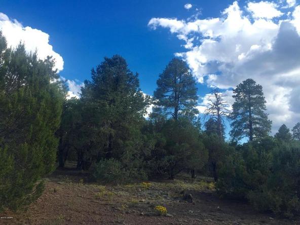 850 Cinder Pit Rd., Show Low, AZ 85901 Photo 53