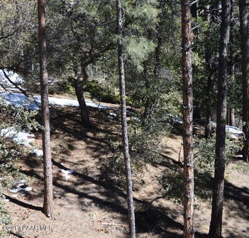 1037 N. Turkey Run, Prescott, AZ 86305 Photo 4