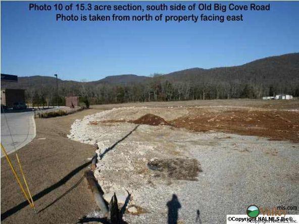 5703 U S. Hwy. 431, Brownsboro, AL 35741 Photo 4