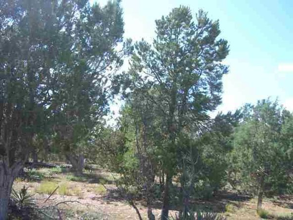 1460 N. Hidden Hollow Ln., Show Low, AZ 85901 Photo 3