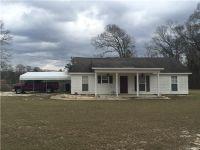 Home for sale: 1038 Pettus Rd., Lapine, AL 36046