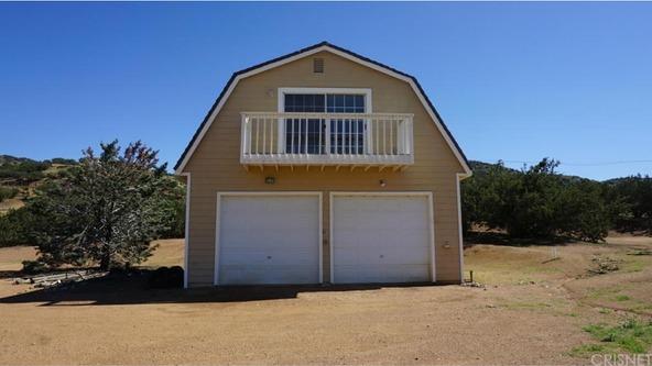 35225 Robinsong Rd., Agua Dulce, CA 91390 Photo 47