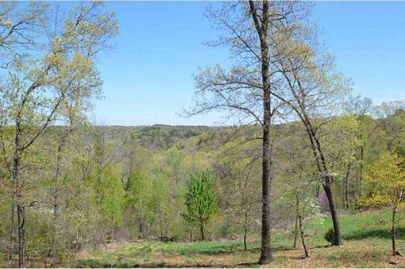 13819 187 Hwy. Blue Meadow, Eureka Springs, AR 72631 Photo 12