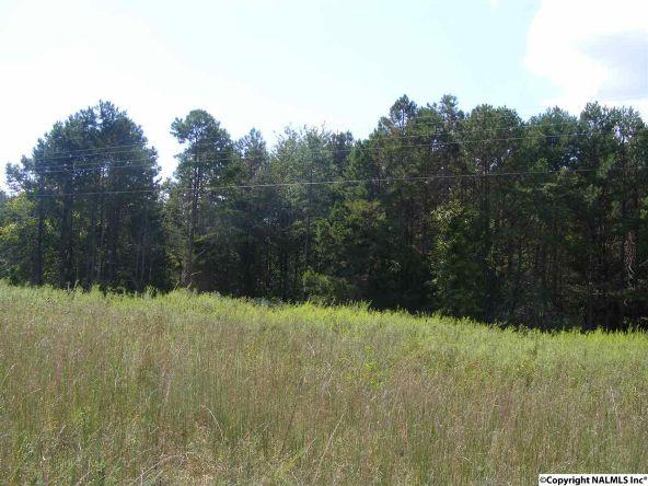 1030 County Rd. 664, Valley Head, AL 35989 Photo 9