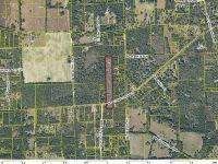 Home for sale: 0000 Vacant Land South Side Of County Rd. 18, Fort White, FL 32038