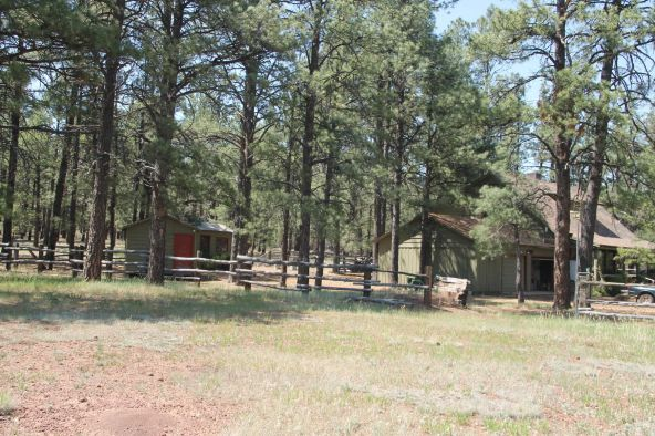 581 Cooper Ranch Rd., Williams, AZ 86046 Photo 28
