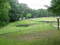 Home for sale: Lewis T. Hyatt Rd., Mount Olive, AL 35117
